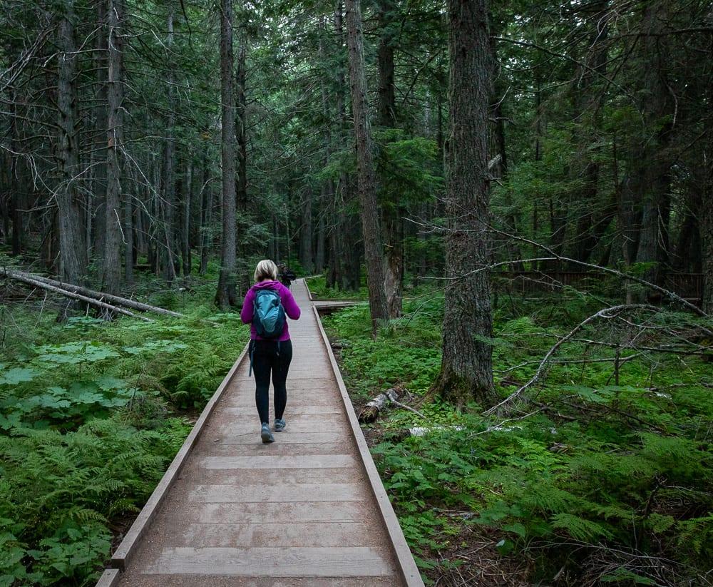 woman hiking on boardwalk through glacier mountain national park