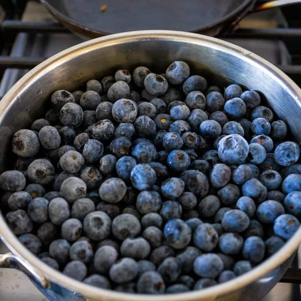 fresh blueberries in stainless steel pan