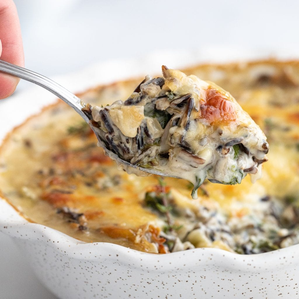 servings spoon of creamy wild rice casserole with mushrooms