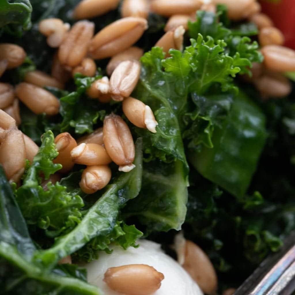 Healthy Sprouted Spelt Mediterranean Salad
