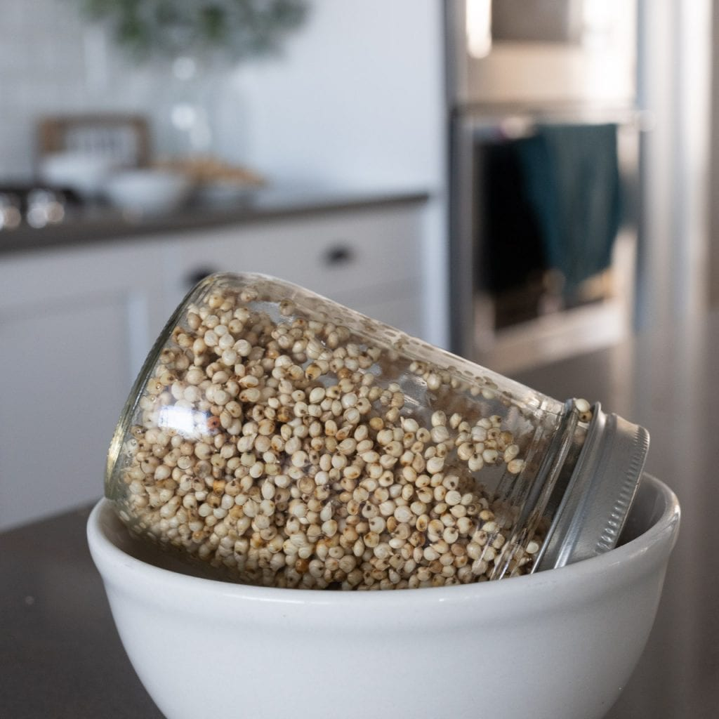 sprouting sorghum in a mason jar tipped upside down with a mesh lid