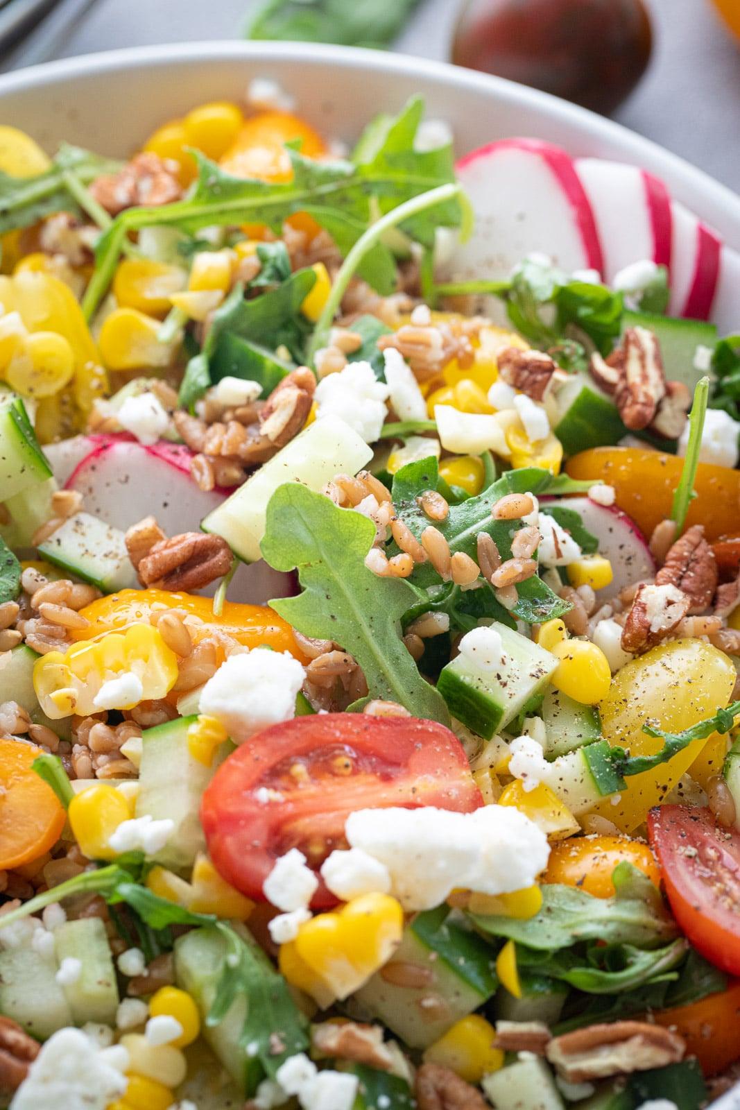 Emmer Salad with vegetables.