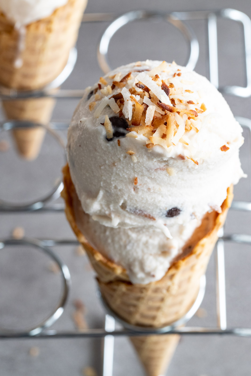 toasted coconut on dairy-free ice cream.